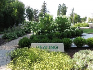 Green Healing Room